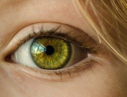 How Lutein Helps Both Your Eyesight and Brain Developement